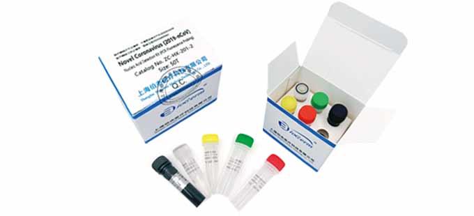 Novel Coronavirus (2019-nCoV) Nucleic Acid Detection Kit(PCR-Fluorescence Probing)