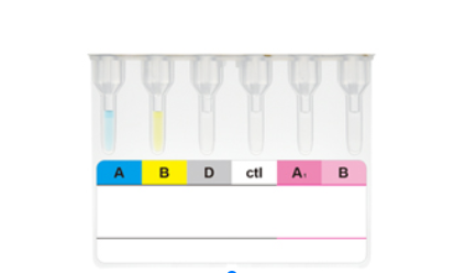 BSBE DiaClon ABO-D+reverse grouping for patients