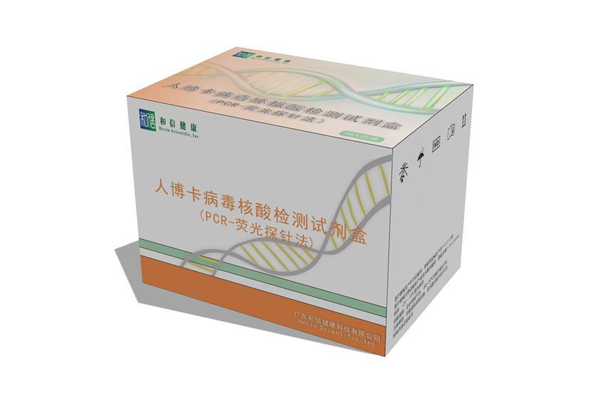 Human Bocavirus nucleic acid detection kit