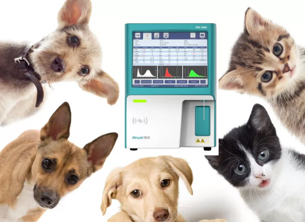 Dewei DW-36VET 3 Part Veterinary Hematology Analyzer